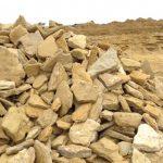 Окол, скальный орешек